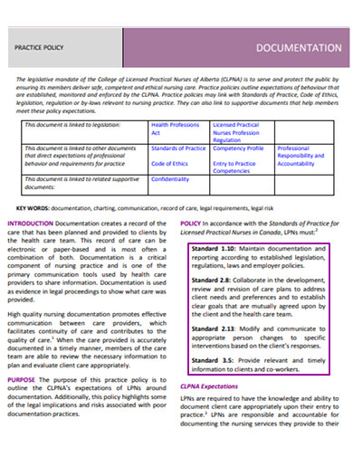 standard documentation practice policy example