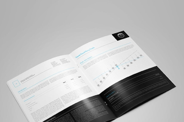 corporate financial planning brochure