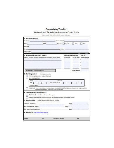 professional experience payment claim form