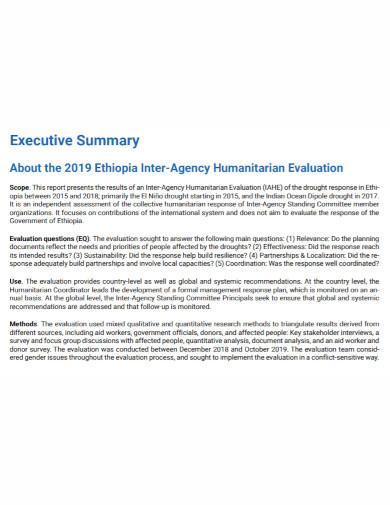 agency executive summary