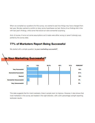 basic marketing strategy report