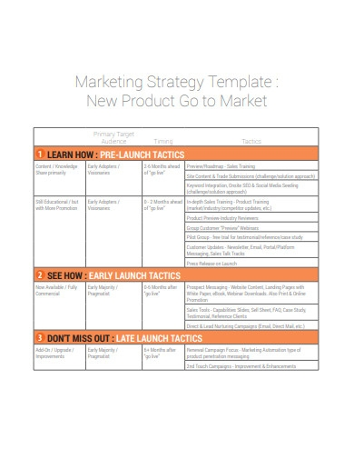 basic new product marketing strategy template