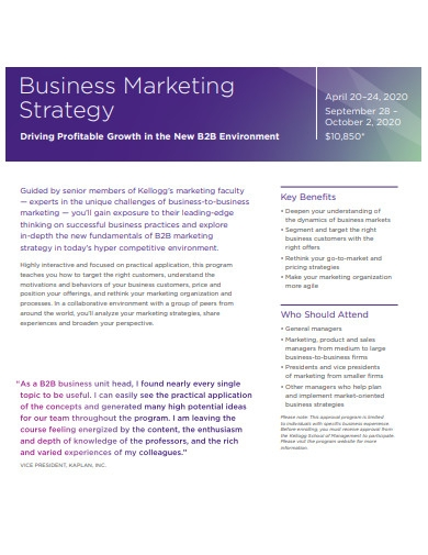 business marketing strategy format