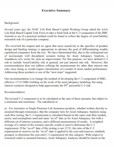capital executive summary