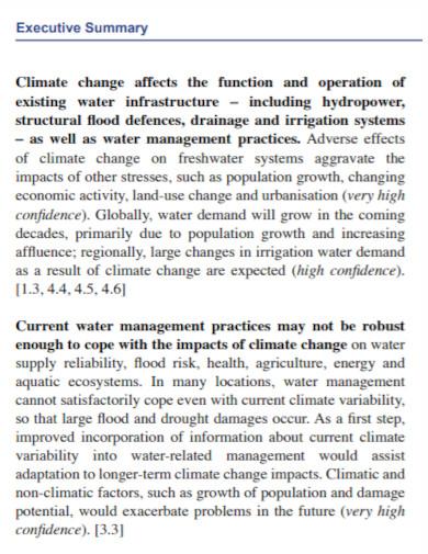 climate executive summary