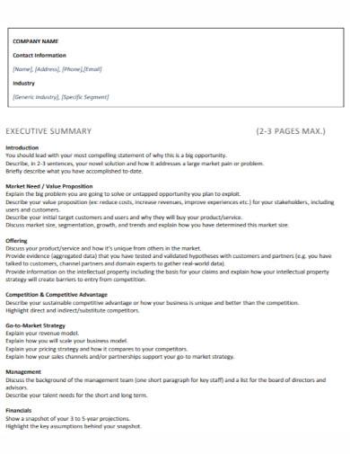 company executive summary