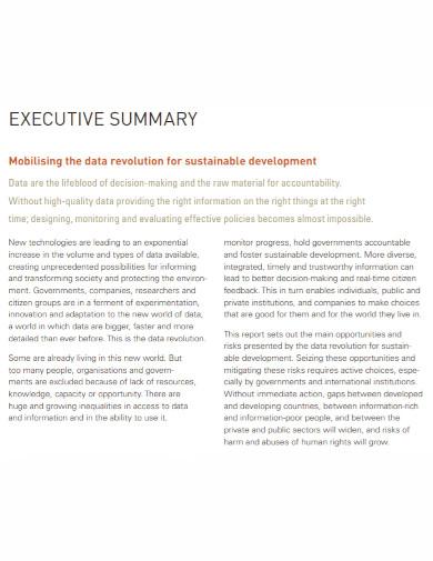 data revolution executive summary