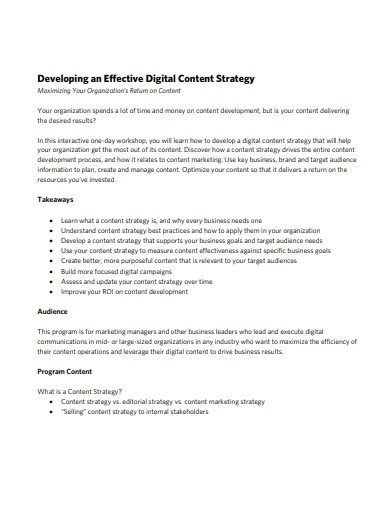 digital content strategy plan