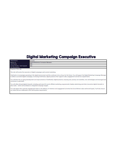 digital marketing campaign executive