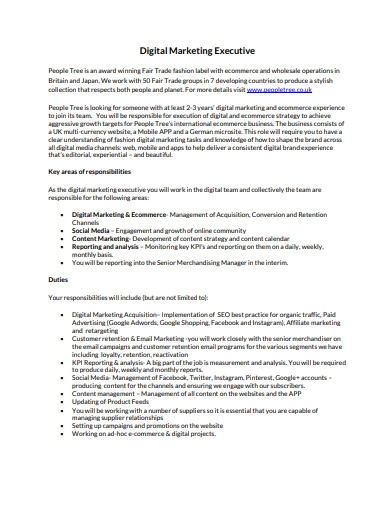 digital marketing executive resume