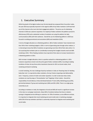 digital marketing executive summary