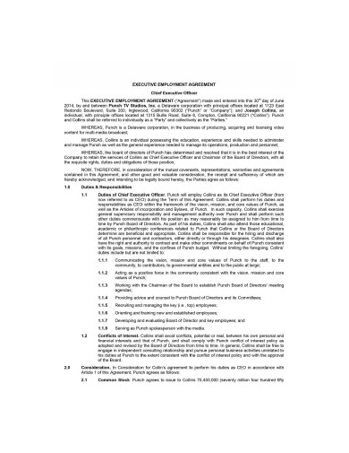 executive employment agreement example