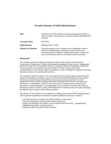 executive summary of self evaluation report