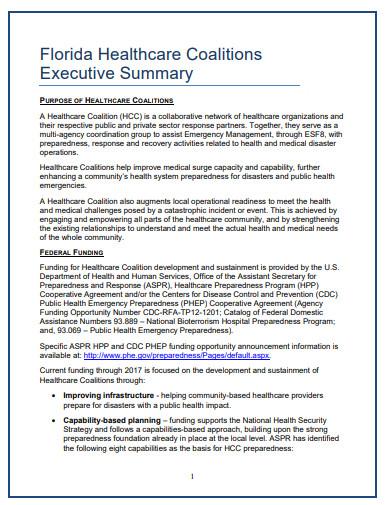 healthcare executive summary format1
