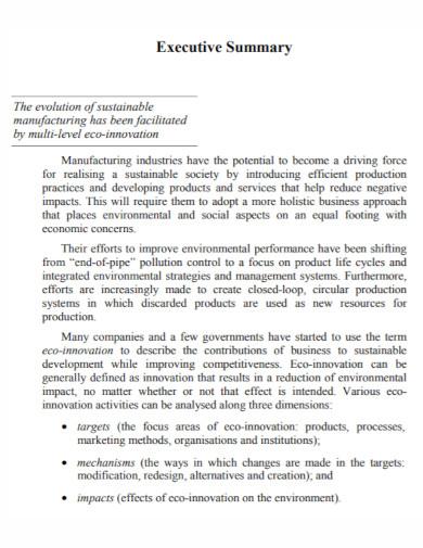 multi level executive summary