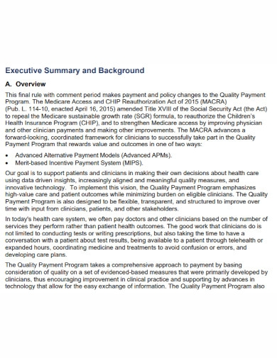 payment program executive summary