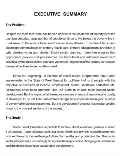 poverty executive summary