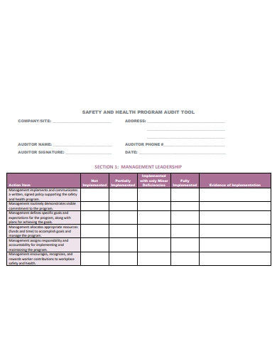 safety and health program audit tool
