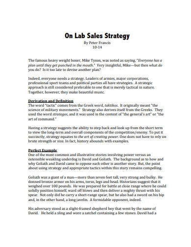 sales strategy format