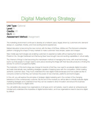 sample digital marketing strategy example