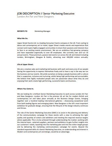 senior marketing executive job description