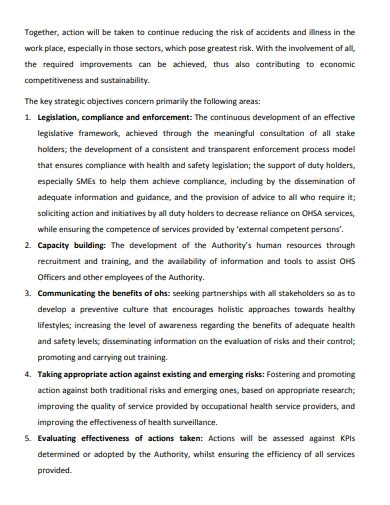 strategic plan for occupational health and safety