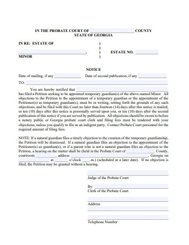 temporarry letters of guardianship of minor