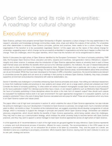 university executive summary