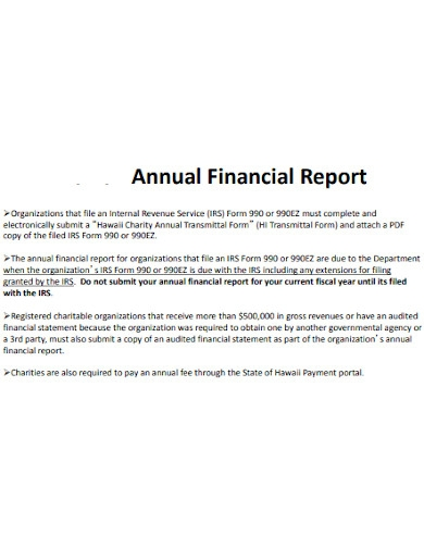 charity annual financial report