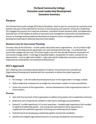 executive level leadership development plan