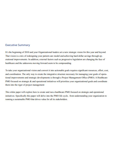 healthcare project management executive summary