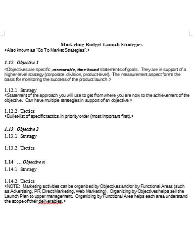 marketing budget launch plan