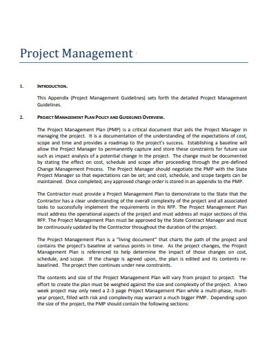 project management executive summary