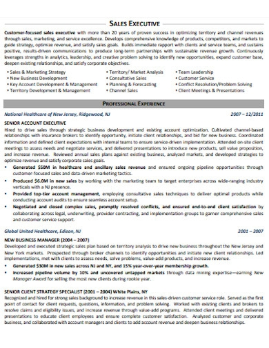 sales executive associates resume