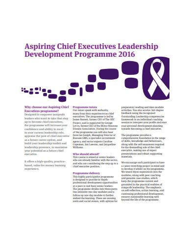 sample executive leadership development plan example