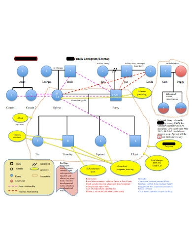 sample family genogram ecomap