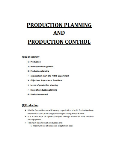 sample production plan
