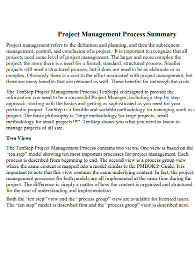 sample project management executive summary