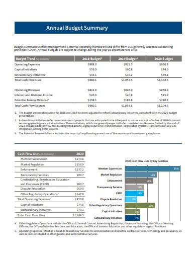 annual budget summary