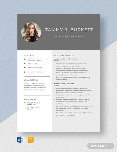 assistant auditor resume template