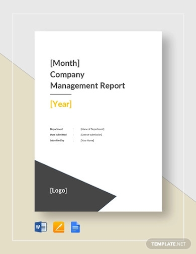 company monthly management report