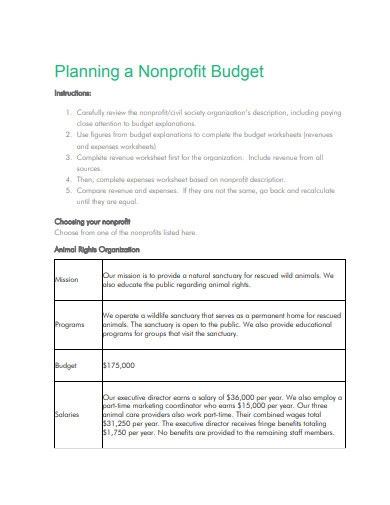nonprofit budget plan