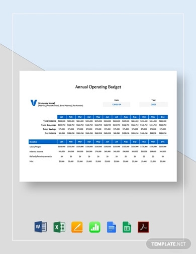 sample annual operating budget