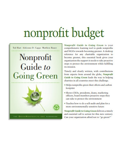 sample nonprofit budget example