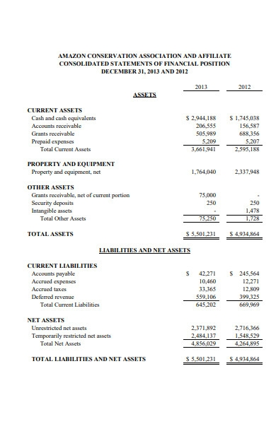 company financial audit report