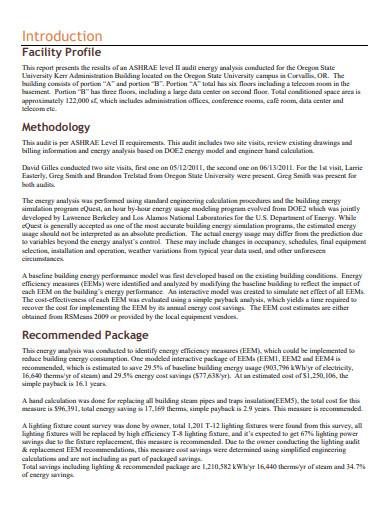 sample energy audit report