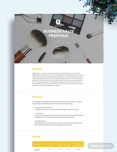 business sales proposal template