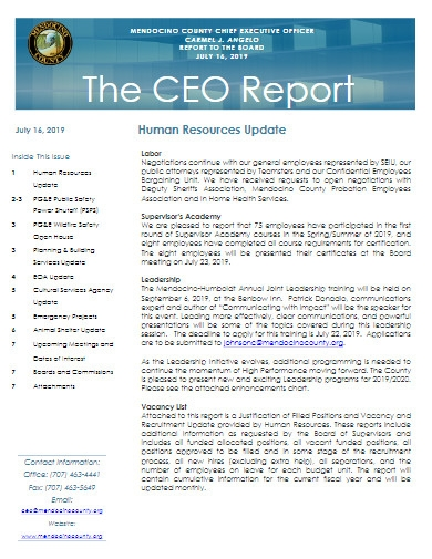 ceo report example