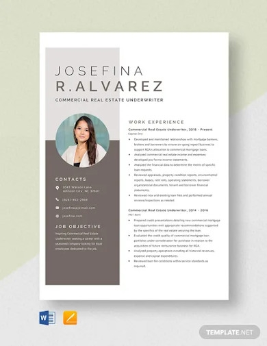 commercial real estate underwriter resume template