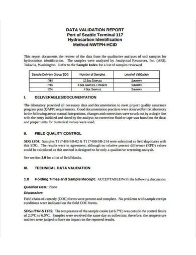 data validation report template